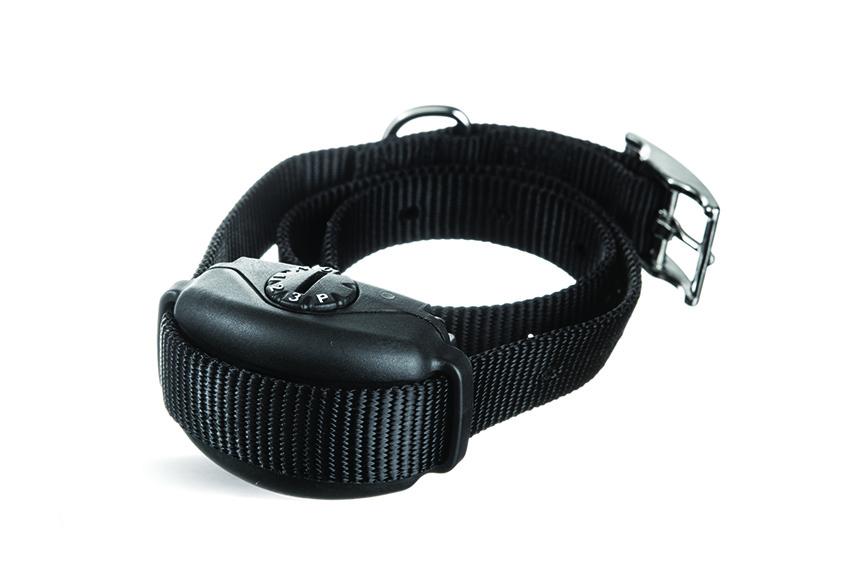 SideWalker leash trainer pic