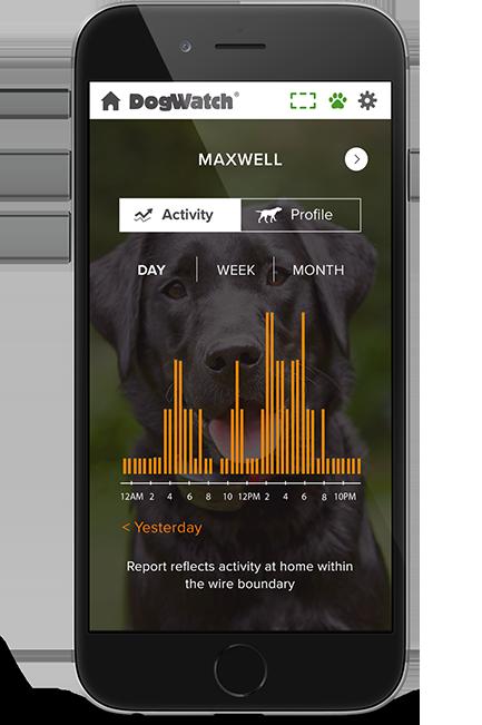 Phone activity screen