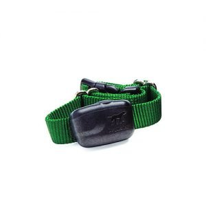 R7 mini receiver collar for small dogs